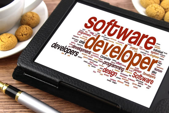 Expert Software Development