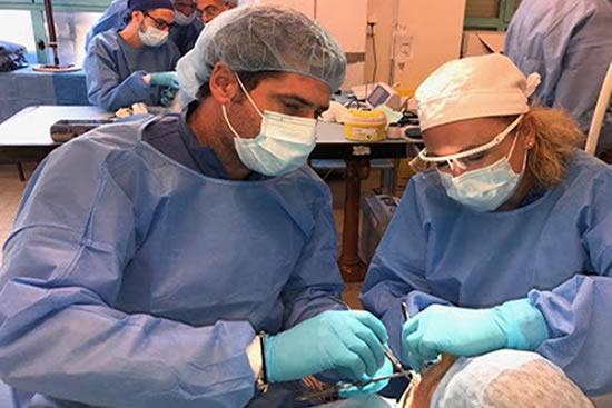 Thoracic abdominal cadaveric dissection - Thoracic and abdominal cadaveric dissection